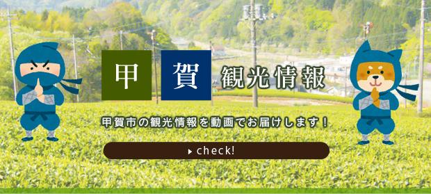 甲賀市観光情報